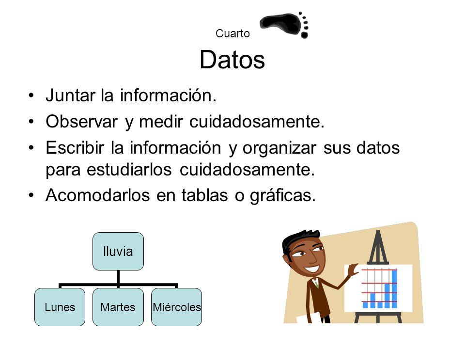 Cuarto Datos Juntar la información. Observar y medir cuidadosamente. Escribir la información y organizar sus datos para estudiarlos cuidadosamente. Ac