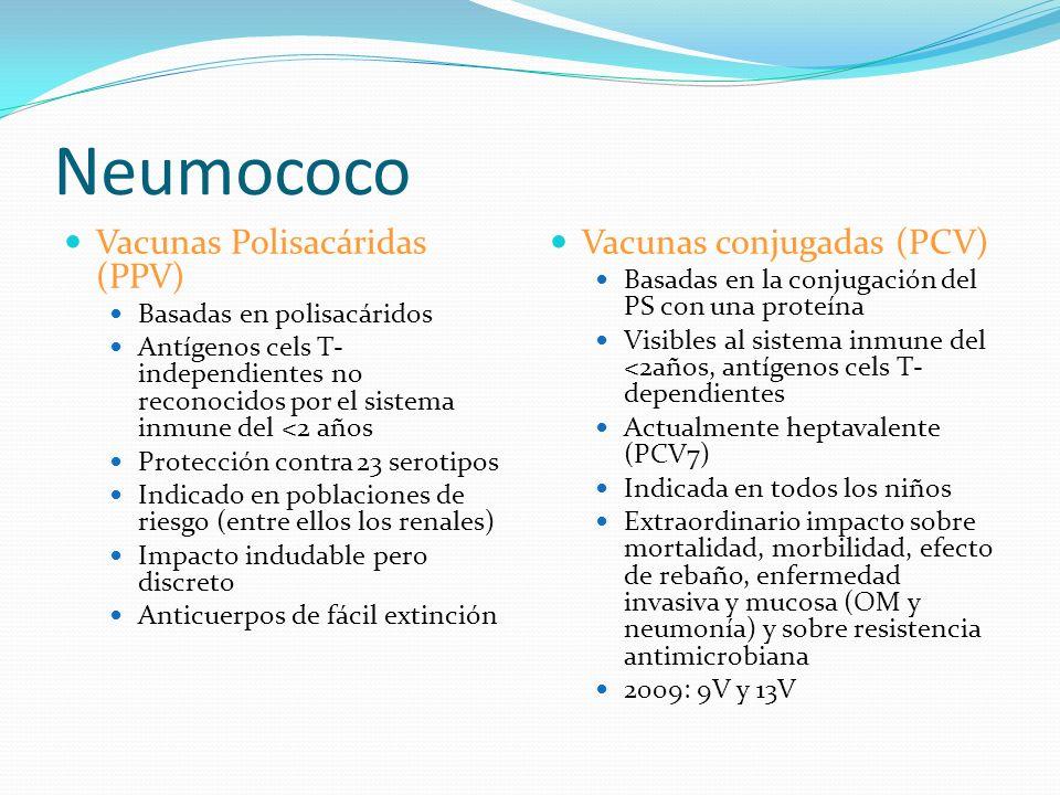 Neumococo Vacunas Polisacáridas (PPV) Basadas en polisacáridos Antígenos cels T- independientes no reconocidos por el sistema inmune del <2 años Prote