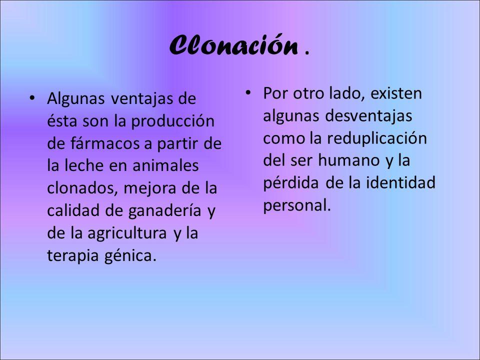 Clonación. Algunas ventajas de ésta son la producción de fármacos a partir de la leche en animales clonados, mejora de la calidad de ganadería y de la