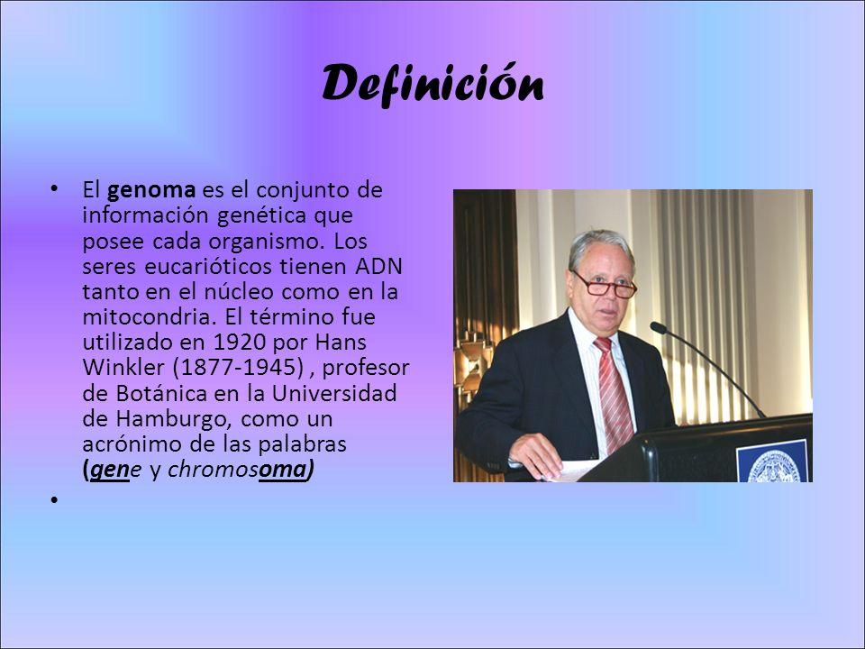 Definición El genoma es el conjunto de información genética que posee cada organismo.