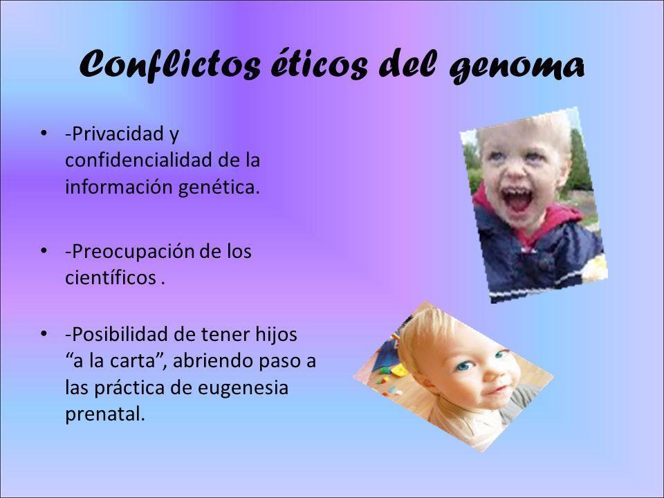 Conflictos éticos del genoma -Privacidad y confidencialidad de la información genética. -Preocupación de los científicos. -Posibilidad de tener hijos