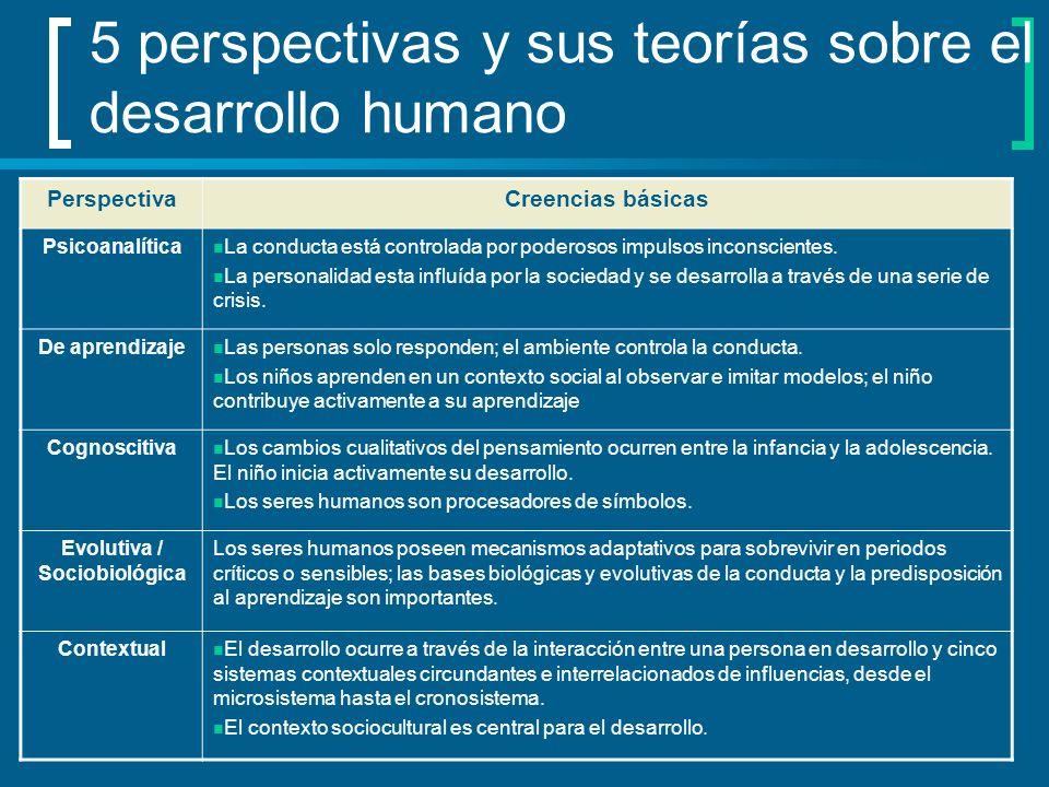 5 perspectivas y sus teorías sobre el desarrollo humano PerspectivaCreencias básicas Psicoanalítica La conducta está controlada por poderosos impulsos