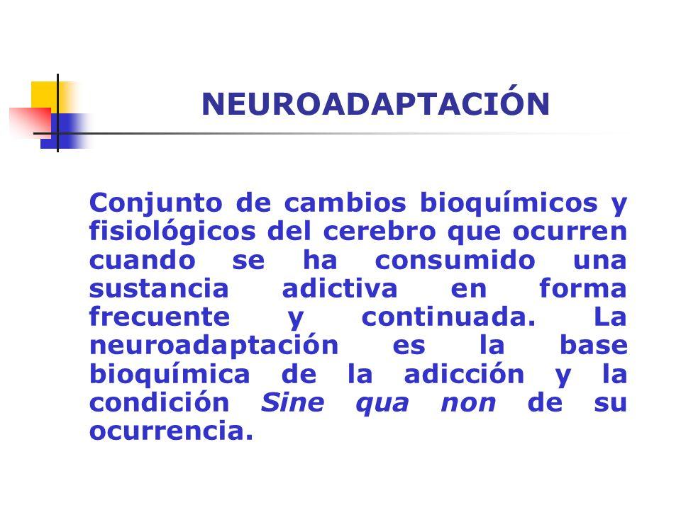 NEUROADAPTACIÓN Conjunto de cambios bioquímicos y fisiológicos del cerebro que ocurren cuando se ha consumido una sustancia adictiva en forma frecuent