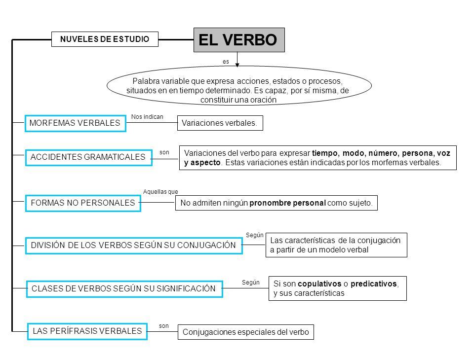 EL VERBO ACCIDENTES GRAMATICALES Palabra variable que expresa acciones, estados o procesos, situados en en tiempo determinado. Es capaz, por sí misma,