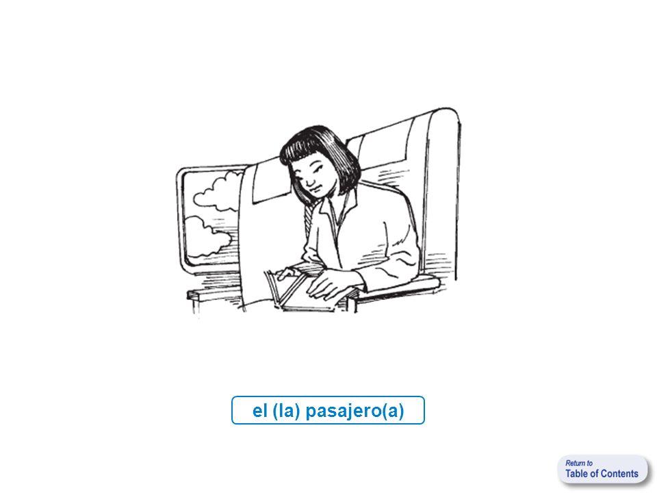 el (la) pasajero(a)
