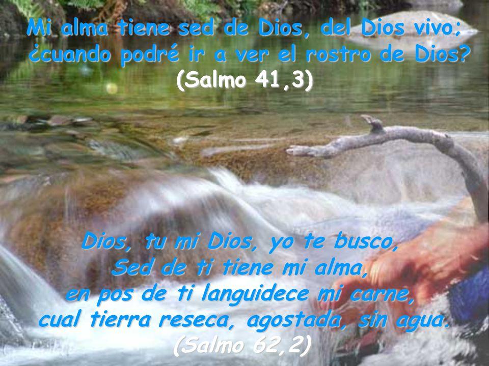 Mi alma tiene sed de Dios, del Dios vivo; ¿cuando podré ir a ver el rostro de Dios? (Salmo 41,3) Dios, tu mi Dios, yo te busco, Sed de ti tiene mi alm