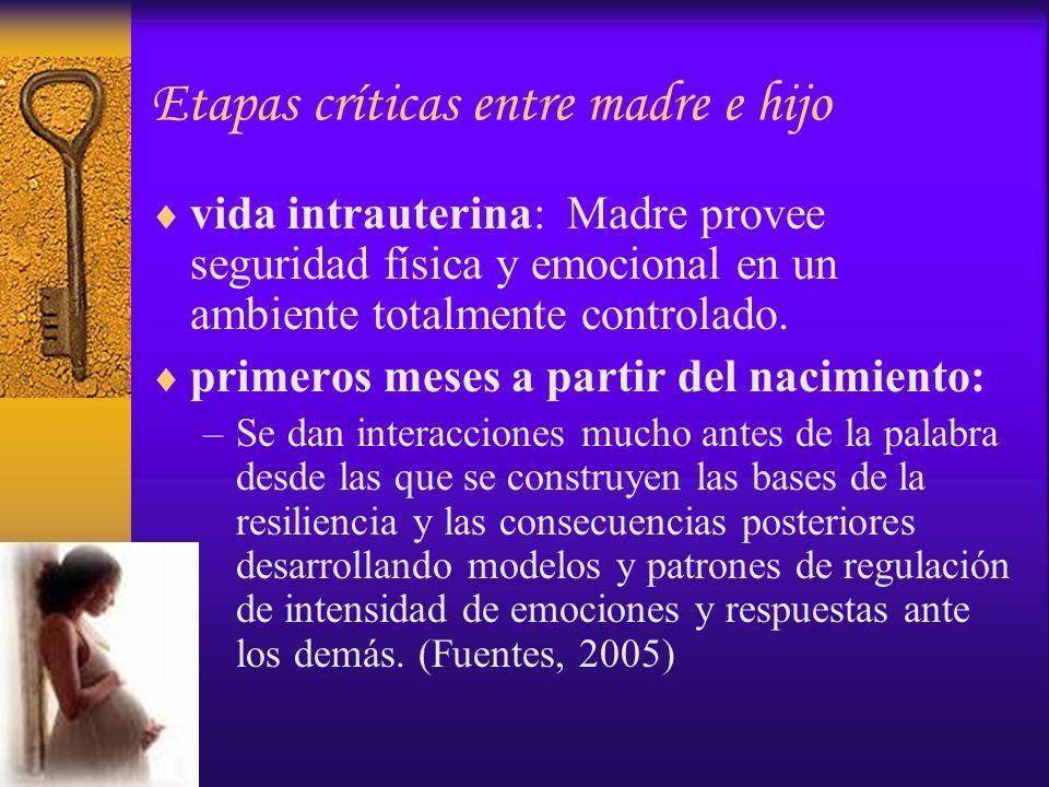 Etapas críticas entre madre e hijo vida intrauterina: Madre provee seguridad física y emocional en un ambiente totalmente controlado. primeros meses a