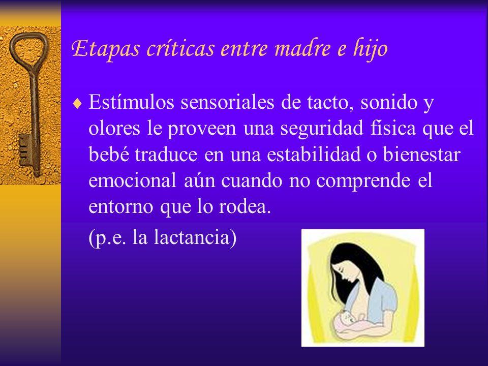 Etapas críticas entre madre e hijo Estímulos sensoriales de tacto, sonido y olores le proveen una seguridad física que el bebé traduce en una estabili