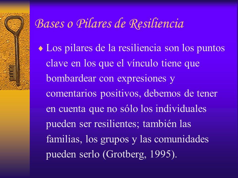 Los pilares de la resiliencia son los puntos clave en los que el vínculo tiene que bombardear con expresiones y comentarios positivos, debemos de tene