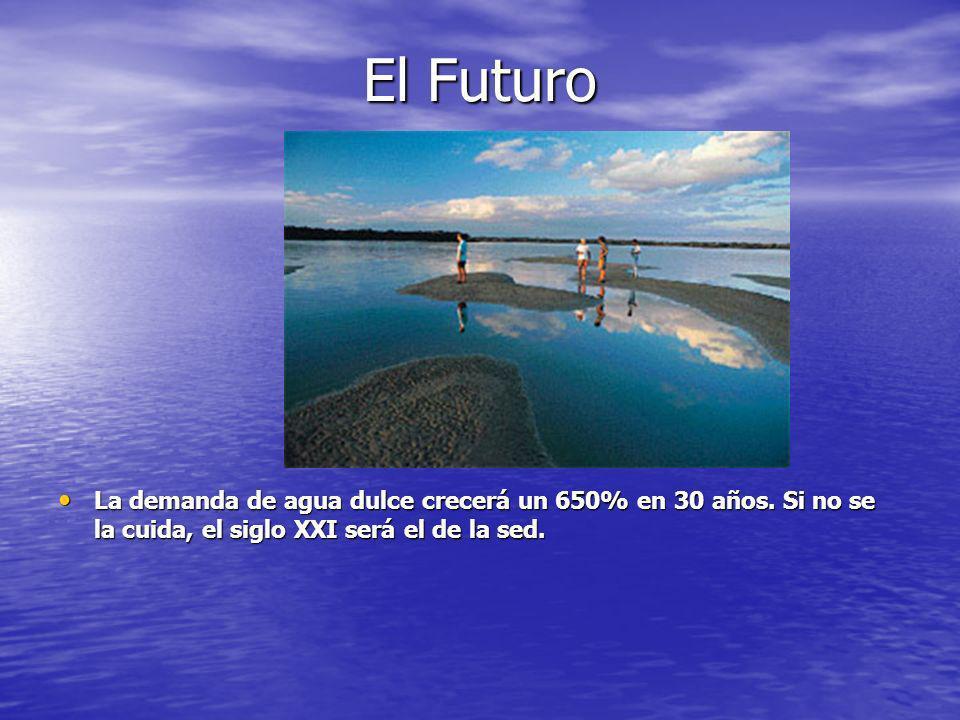 El Futuro La demanda de agua dulce crecerá un 650% en 30 años. Si no se la cuida, el siglo XXI será el de la sed. La demanda de agua dulce crecerá un