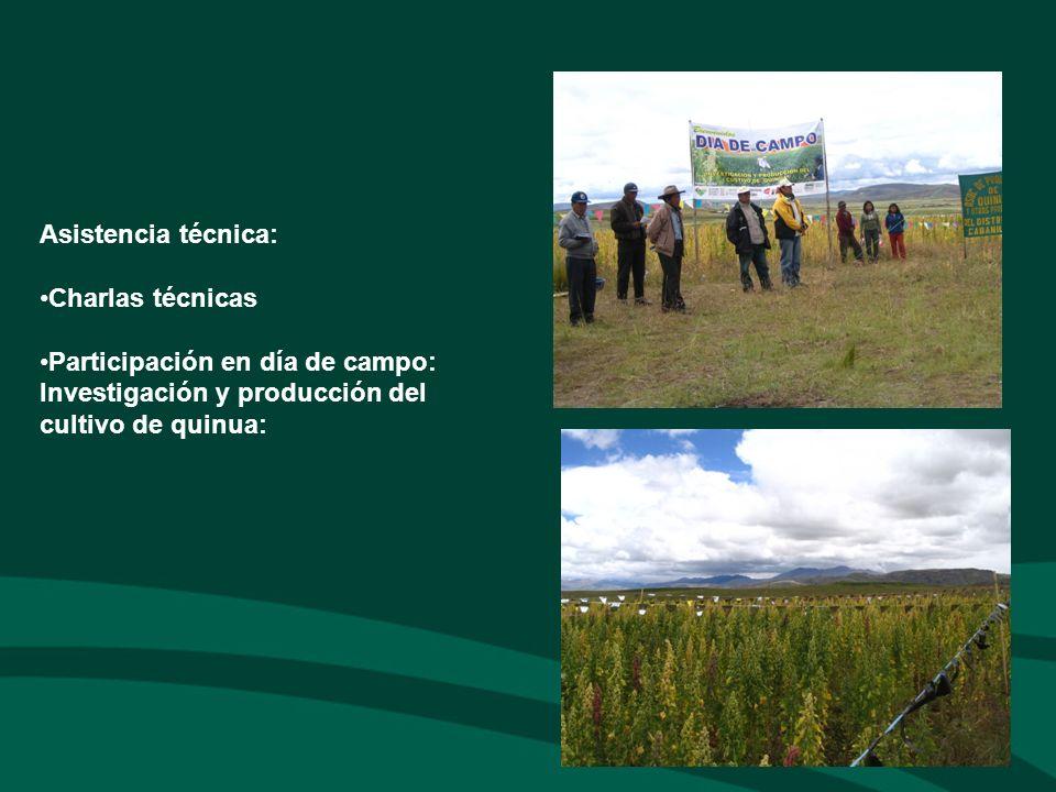 Asistencia técnica: Charlas técnicas Participación en día de campo: Investigación y producción del cultivo de quinua: