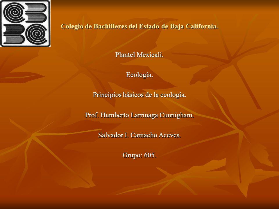 Colegio de Bachilleres del Estado de Baja California. Plantel Mexicali. Ecología. Principios básicos de la ecología. Prof. Humberto Larrinaga Cunnigha