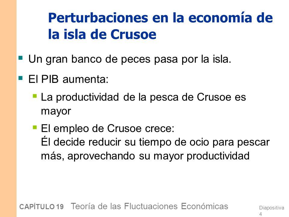 Diapositiva 4 CAPÍTULO 19 Teoría de las Fluctuaciones Económicas Perturbaciones en la economía de la isla de Crusoe Un gran banco de peces pasa por la isla.