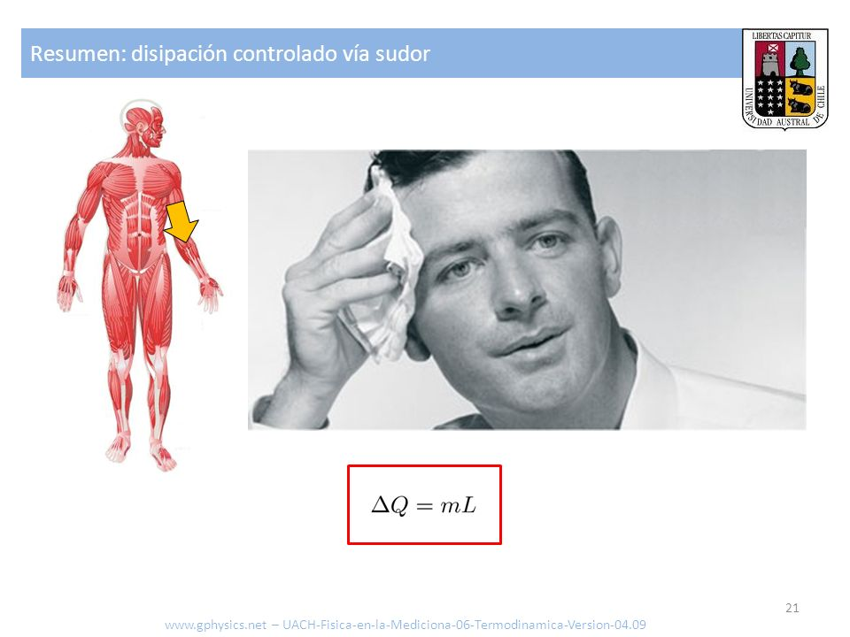 Contacto Dr.Willy H.