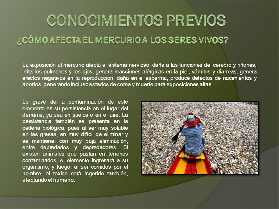 Lo ocurrido en Choropampa muestra que los riesgos a los que se hallan sometidas las poblaciones aledañas a las operaciones de Minera Yanacocha son reales.