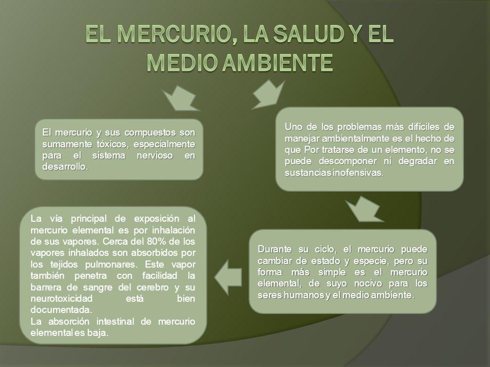 El mercurio y sus compuestos son sumamente tóxicos, especialmente para el sistema nervioso en desarrollo. Uno de los problemas más difíciles de maneja