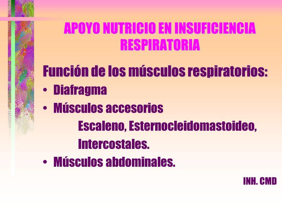 APOYO NUTRICIO EN INSUFICIENCIA RESPIRATORIA Función de los músculos respiratorios: Diafragma Músculos accesorios Escaleno, Esternocleidomastoideo, In