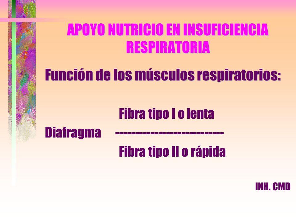 APOYO NUTRICIO EN INSUFICIENCIA RESPIRATORIA Función de los músculos respiratorios: Fibra tipo I o lenta Diafragma ---------------------------- Fibra