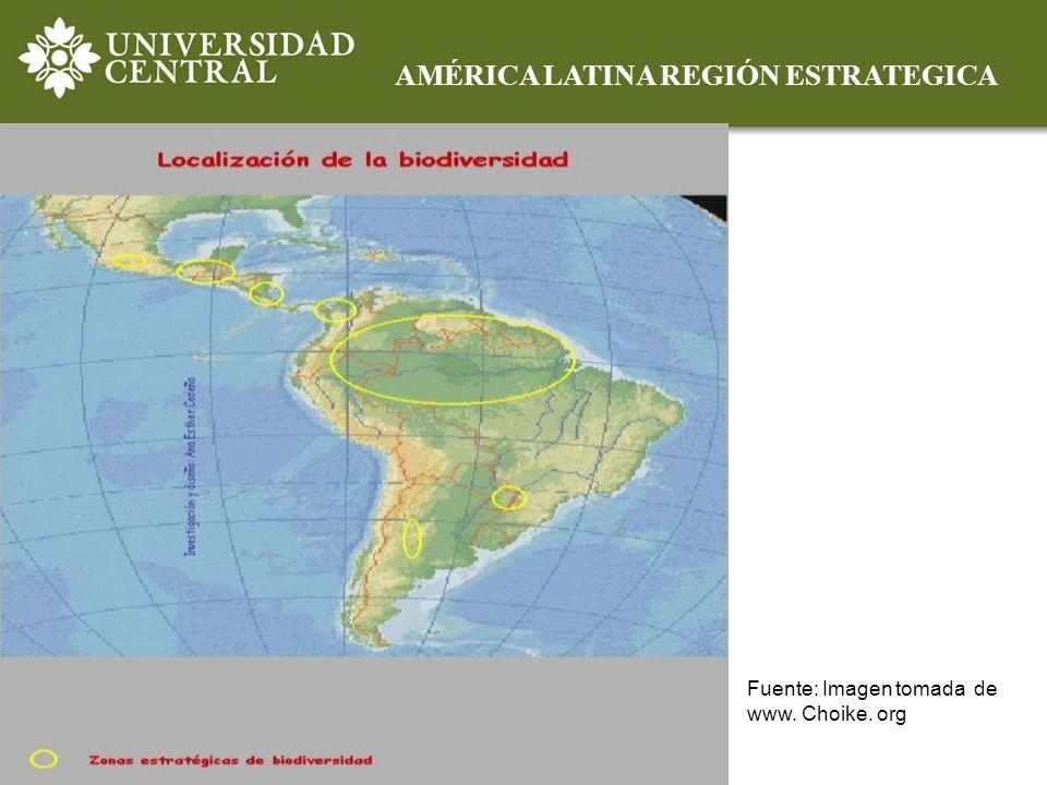 AMÉRICA LATINA REGIÓN ESTRATEGICA Fuente: Imagen tomada de www. Choike. org