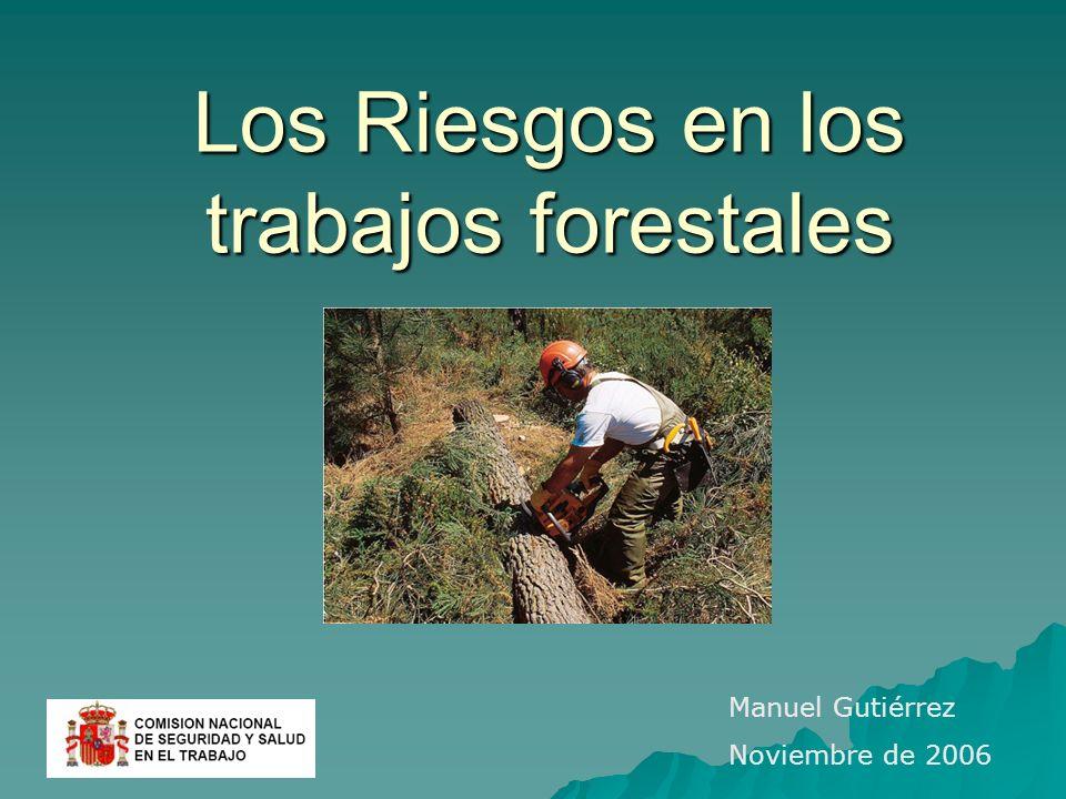 Los Riesgos en los trabajos forestales Manuel Gutiérrez Noviembre de 2006