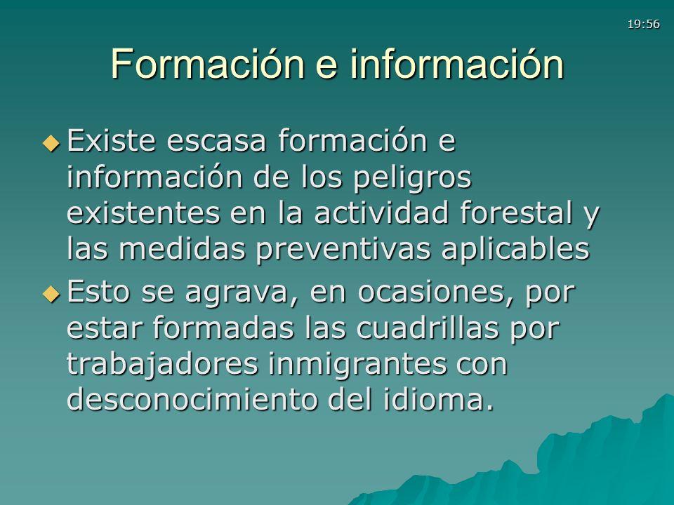 19:56 Formación e información Existe escasa formación e información de los peligros existentes en la actividad forestal y las medidas preventivas apli