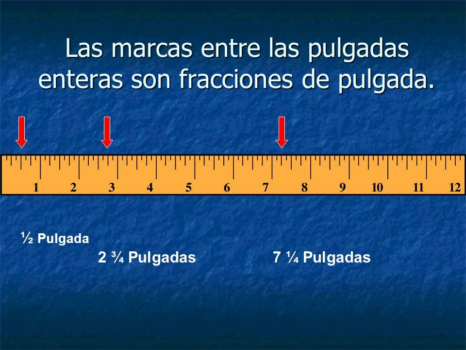 En una regla, cada pulgada se considera una pulgada entera. Una pulgada Dos pulgadas Tres pulgadas Nueve pulgadas enteras
