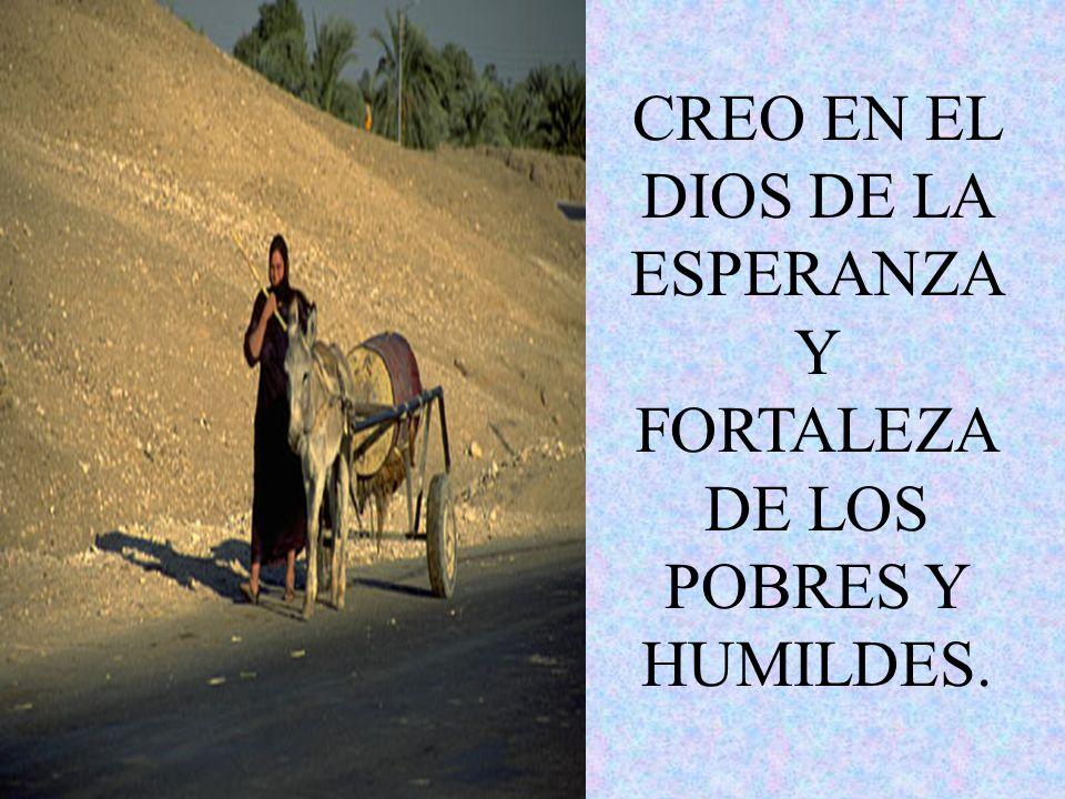 CREO EN EL RESUCITADO COMO FUENTE DE VIDA Y FRATERNIDAD; CREO EN SU ACCION SALVADORA EN NUESTRAS VIDAS.