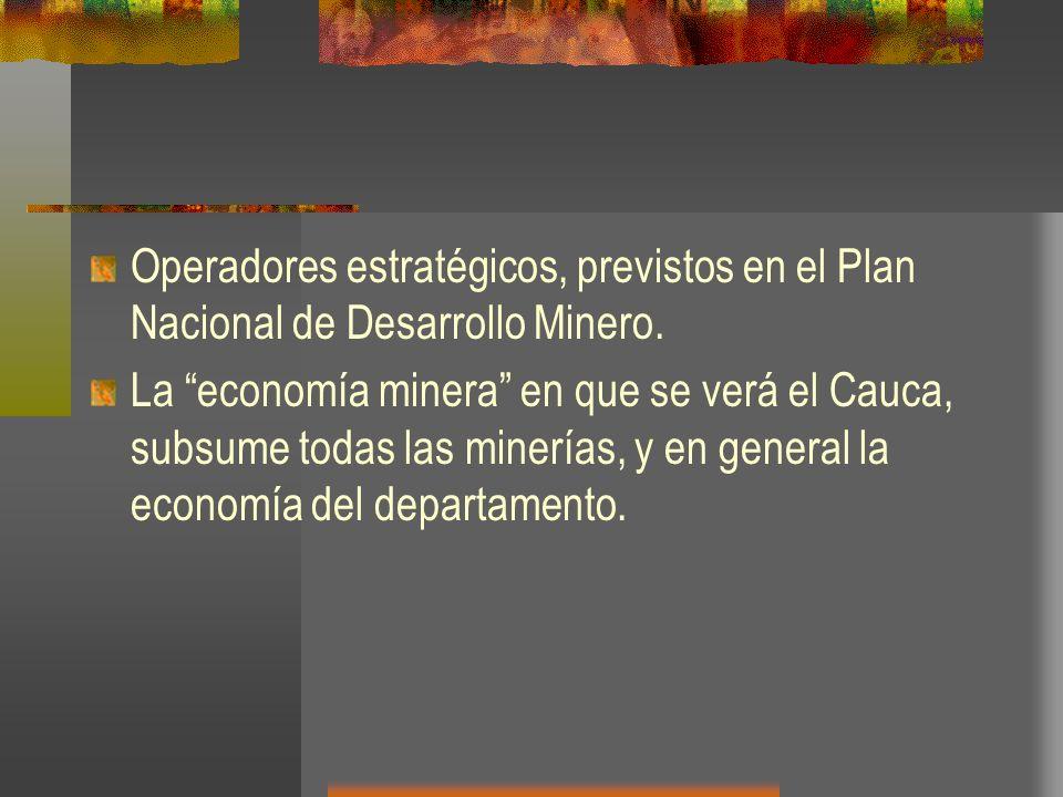 Operadores estratégicos, previstos en el Plan Nacional de Desarrollo Minero. La economía minera en que se verá el Cauca, subsume todas las minerías, y