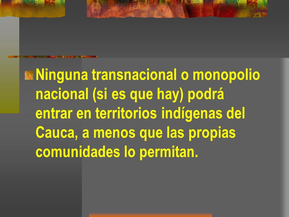 Ninguna transnacional o monopolio nacional (si es que hay) podrá entrar en territorios indígenas del Cauca, a menos que las propias comunidades lo per
