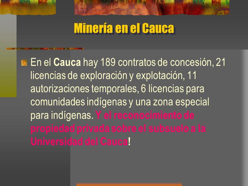 Minería en el Cauca En el Cauca hay 189 contratos de concesión, 21 licencias de exploración y explotación, 11 autorizaciones temporales, 6 licencias p