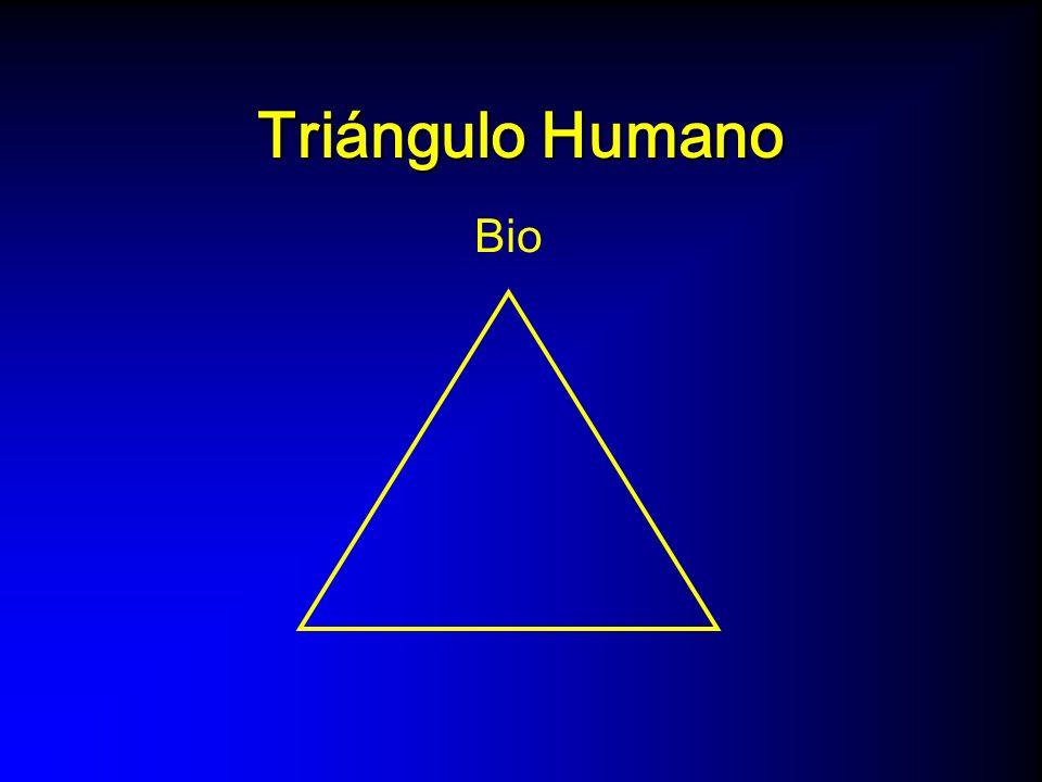 Triángulo Humano Bio Psico (espiritual)
