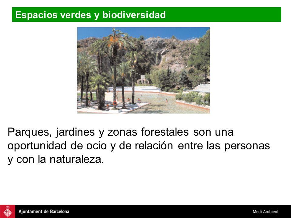 Espacios verdes y biodiversidad Parques, jardines y zonas forestales son una oportunidad de ocio y de relación entre las personas y con la naturaleza.