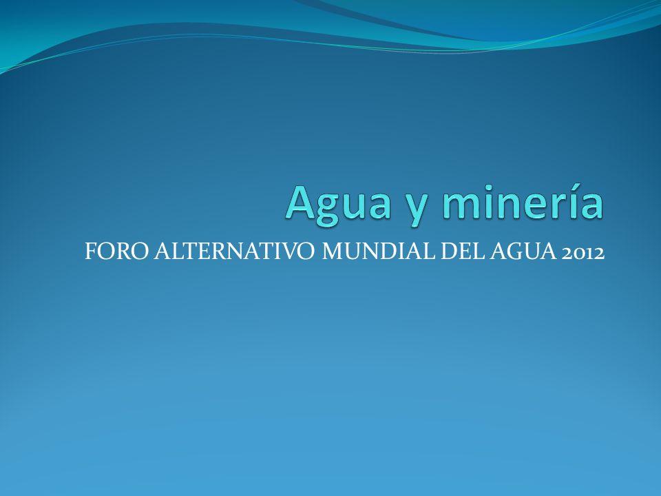 FORO ALTERNATIVO MUNDIAL DEL AGUA 2012