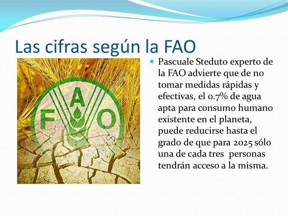 Las cifras según la FAO Pascuale Steduto experto de la FAO advierte que de no tomar medidas rápidas y efectivas, el 0.7% de agua apta para consumo hum
