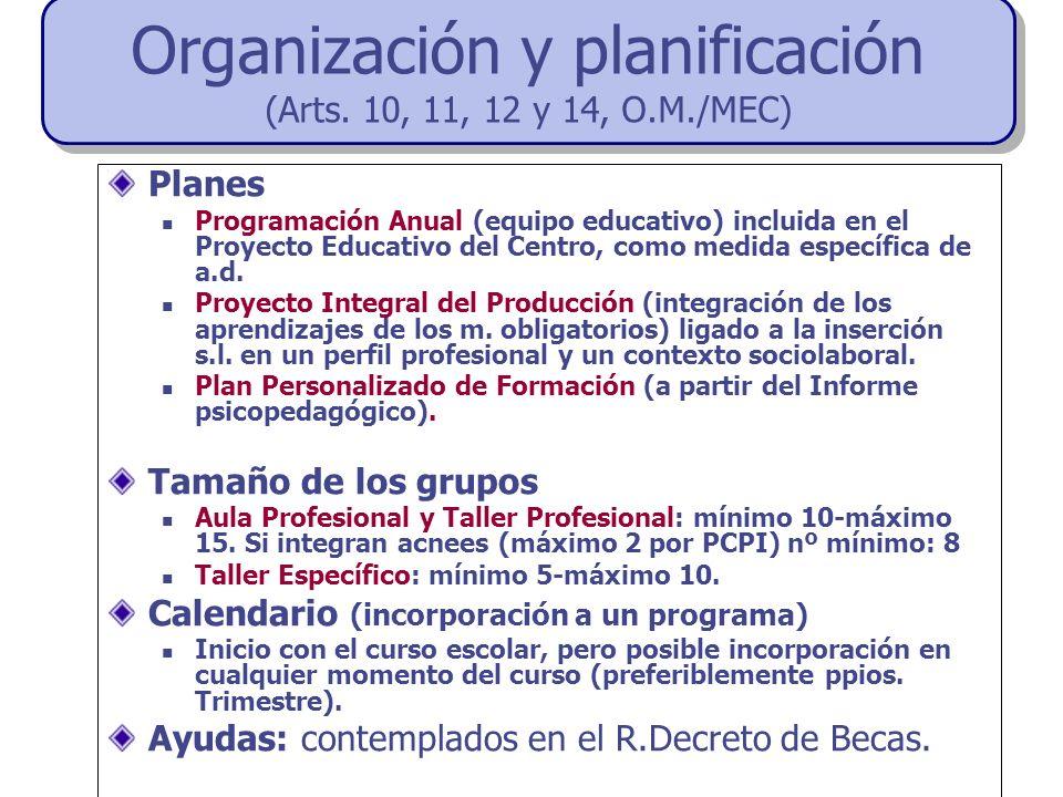 Planes Programación Anual (equipo educativo) incluida en el Proyecto Educativo del Centro, como medida específica de a.d. Proyecto Integral del Produc