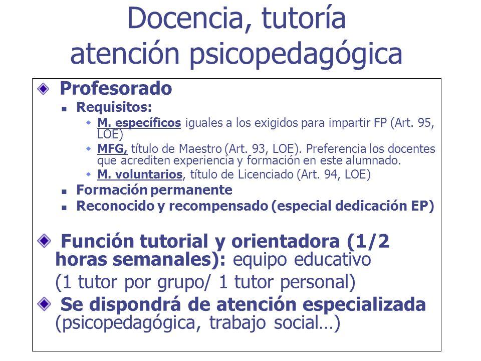 Profesorado Requisitos: M. específicos iguales a los exigidos para impartir FP (Art. 95, LOE) MFG, título de Maestro (Art. 93, LOE). Preferencia los d