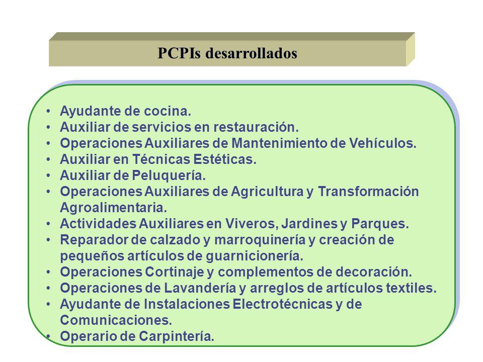 PCPIs desarrollados Ayudante de cocina. Auxiliar de servicios en restauración. Operaciones Auxiliares de Mantenimiento de Vehículos. Auxiliar en Técni