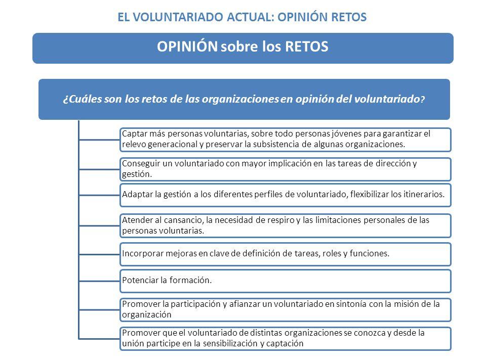 ¿Cuáles son los retos de las organizaciones en opinión del voluntariado .