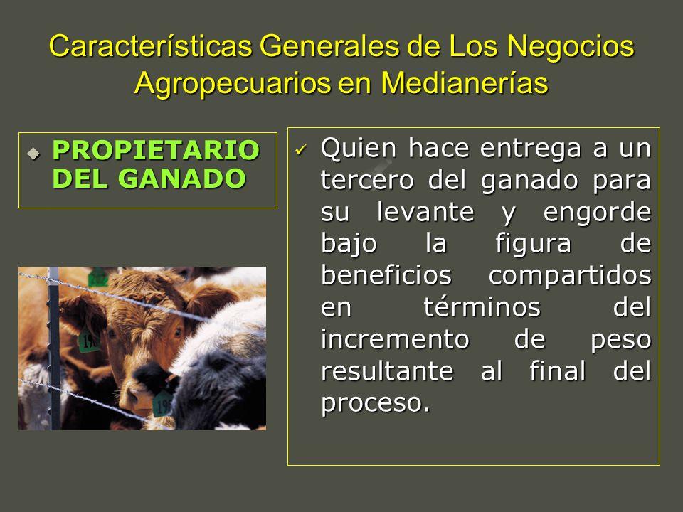 Características Generales de Los Negocios Agropecuarios en Medianerías Quien hace entrega a un tercero del ganado para su levante y engorde bajo la fi