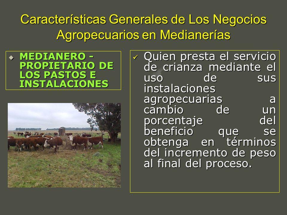 Características Generales de Los Negocios Agropecuarios en Medianerías Quien presta el servicio de crianza mediante el uso de sus instalaciones agrope