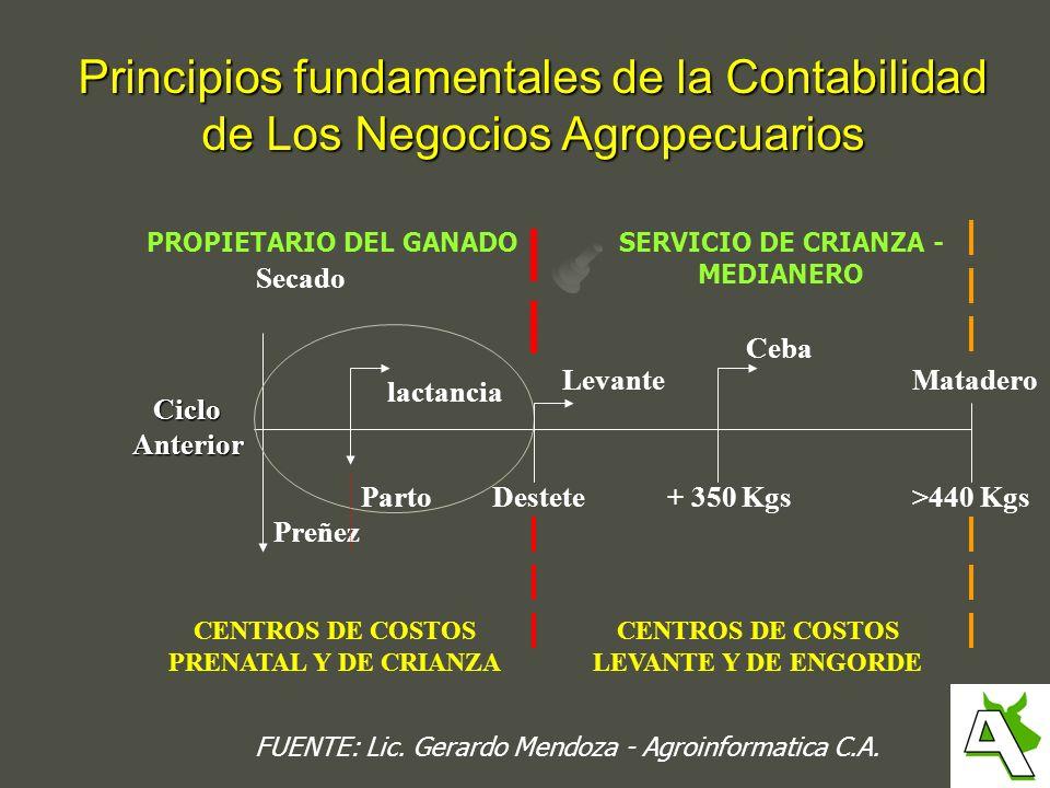 Principios fundamentales de la Contabilidad de Los Negocios Agropecuarios CicloAnterior Preñez Secado CENTROS DE COSTOS PRENATAL Y DE CRIANZA Parto la