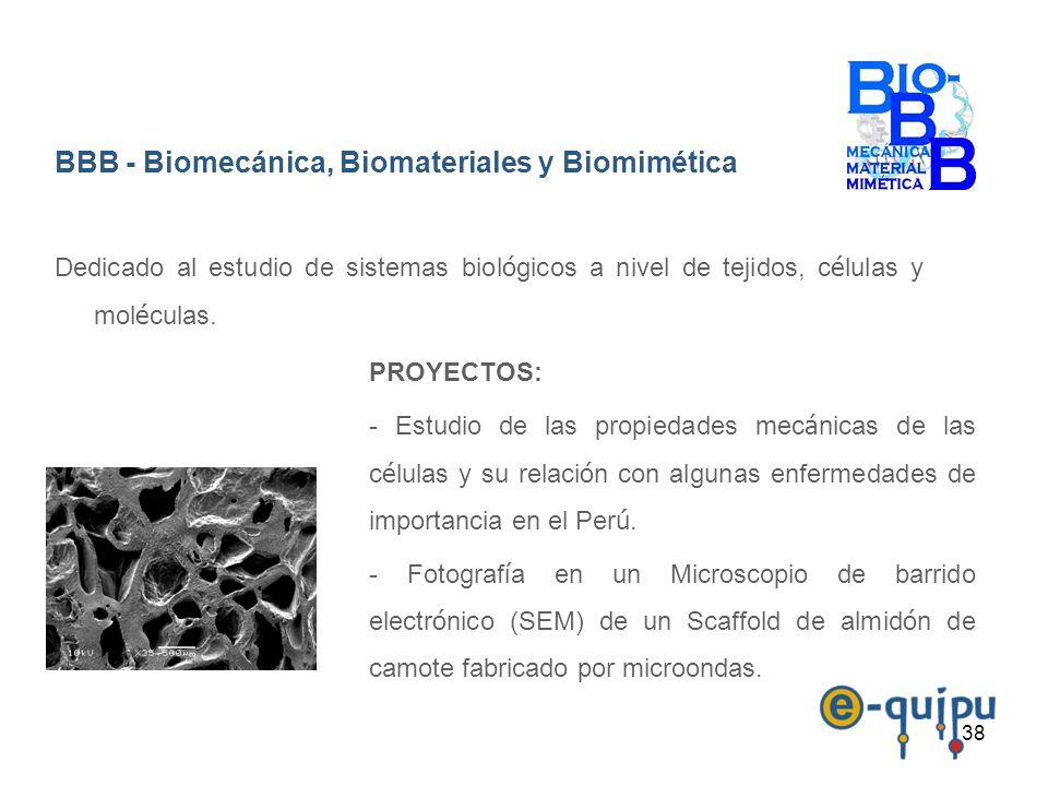 38 BBB - Biomecánica, Biomateriales y Biomimética Dedicado al estudio de sistemas biol ó gicos a nivel de tejidos, c é lulas y mol é culas. PROYECTOS: