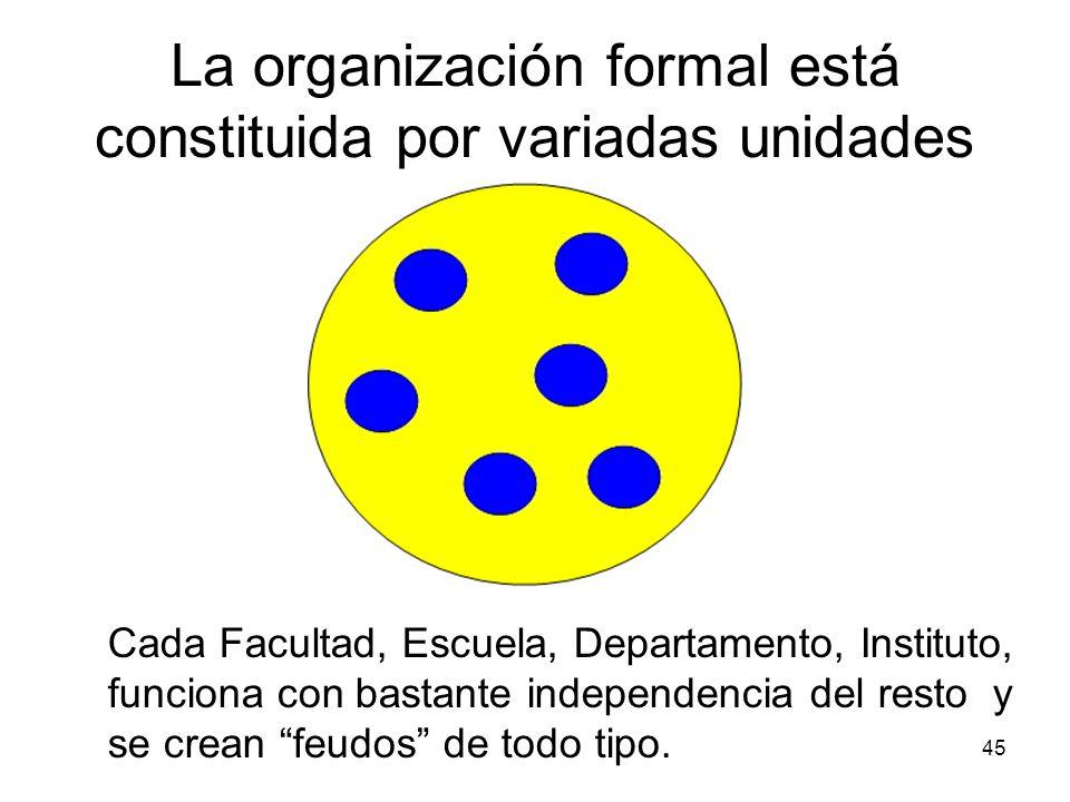 45 La organización formal está constituida por variadas unidades Cada Facultad, Escuela, Departamento, Instituto, funciona con bastante independencia