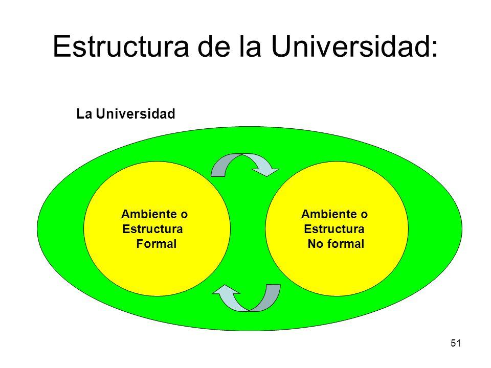 51 La Universidad Estructura de la Universidad: Ambiente o Estructura Formal Ambiente o Estructura No formal