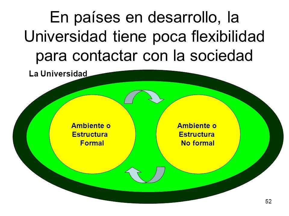 52 En países en desarrollo, la Universidad tiene poca flexibilidad para contactar con la sociedad Ambiente o Estructura Formal Ambiente o Estructura N