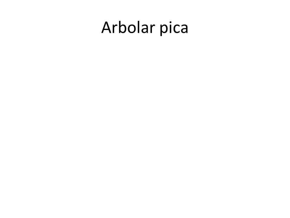 Arbolar pica