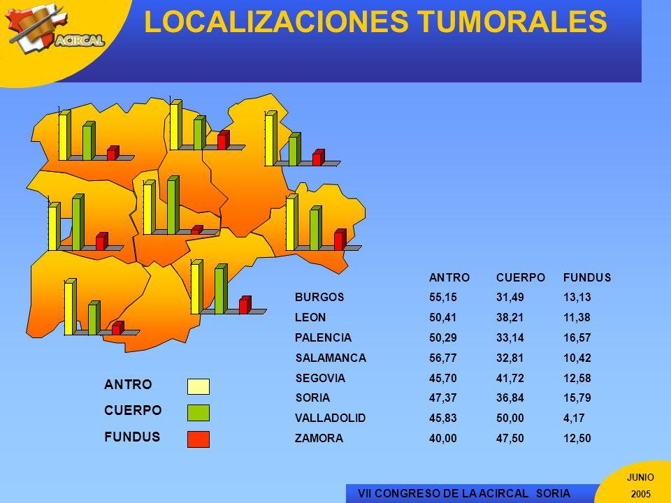 VII CONGRESO DE LA ACIRCAL SORIA JUNIO 2005 LOCALIZACIONES TUMORALES ANTROCUERPOFUNDUS BURGOS55,1531,4913,13 LEON50,4138,2111,38 PALENCIA50,2933,1416,