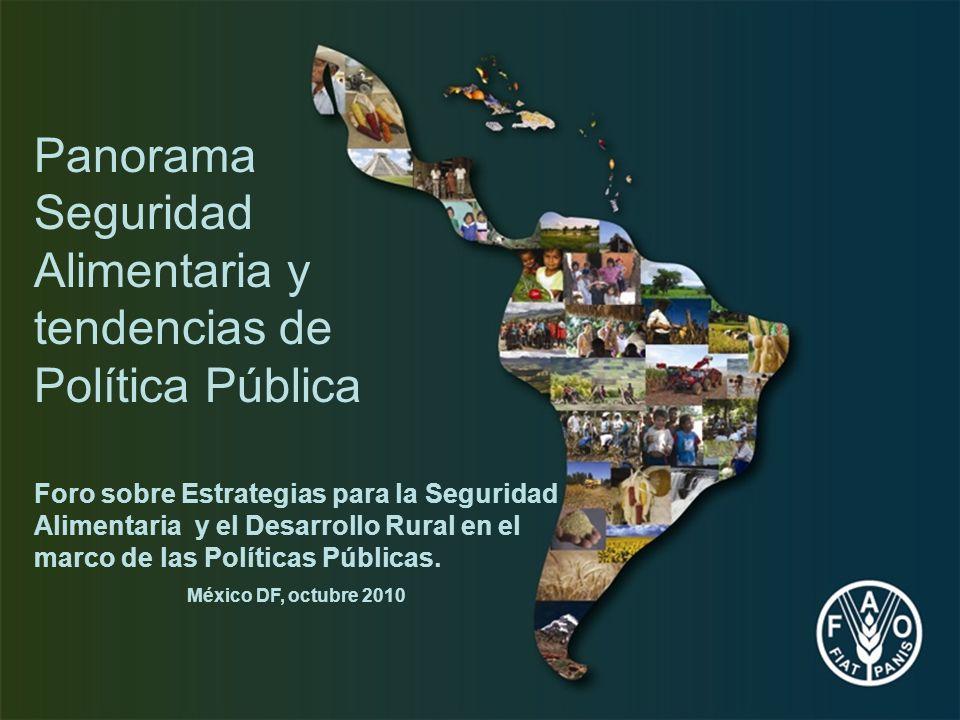 Foro sobre Estrategias para la Seguridad Alimentaria y el Desarrollo Rural en el marco de las Políticas Públicas. México DF, octubre 2010 Panorama Seg