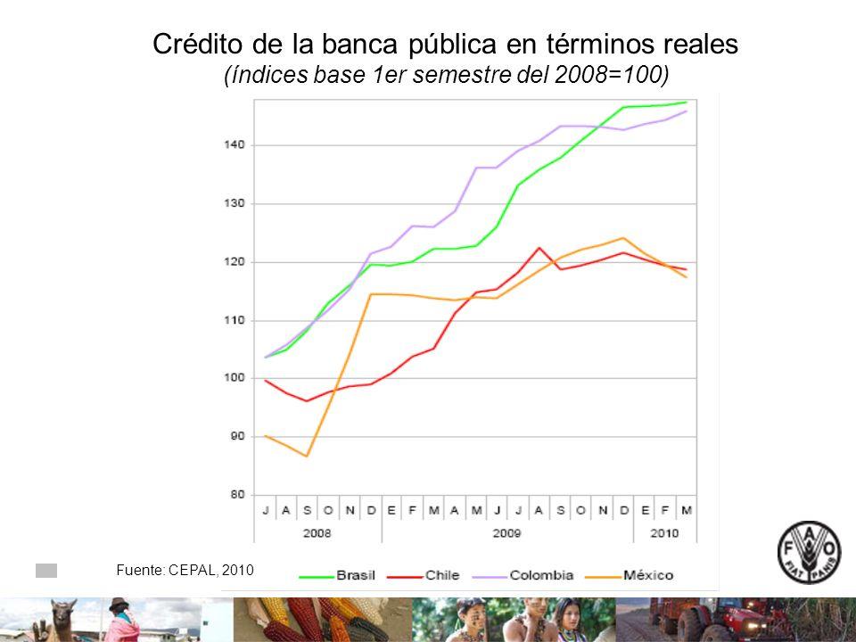 Crédito de la banca pública en términos reales (índices base 1er semestre del 2008=100) Fuente: CEPAL, 2010