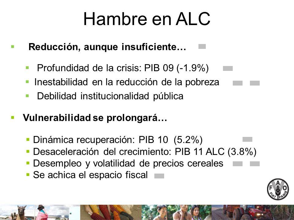 Hambre en ALC Profundidad de la crisis: PIB 09 (-1.9%) Inestabilidad en la reducción de la pobreza Debilidad institucionalidad pública Vulnerabilidad